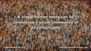 0065-BiologyOnCommunity
